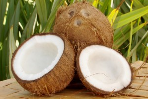 coconuts2-300x200